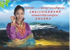 青海省天峻县政府服务热线12345系统